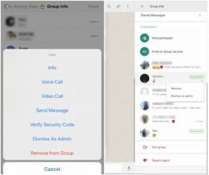 WhatsApp, beta 2.18.117 Update, High Priority, Notifications, Features, Android, iOS, web, Know, What's Changed?