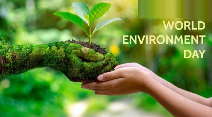 world-environment-day-june-5th-theme-history-quotes-activities-slogans-and-why-its-celebrated