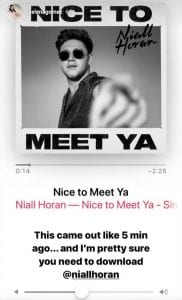 niall-horan-nice-to-meet-yas-music-video-selena-gomez